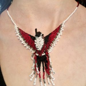 red and black hummingbird neck